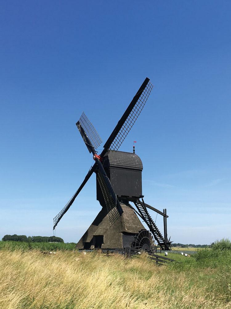 Mühle in der Region Biesbosch